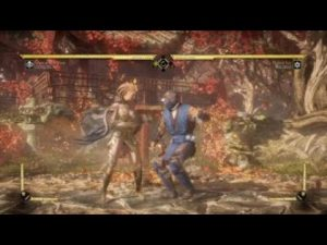 MK11 Aftermath Cetrion Tips against Sub-Zero